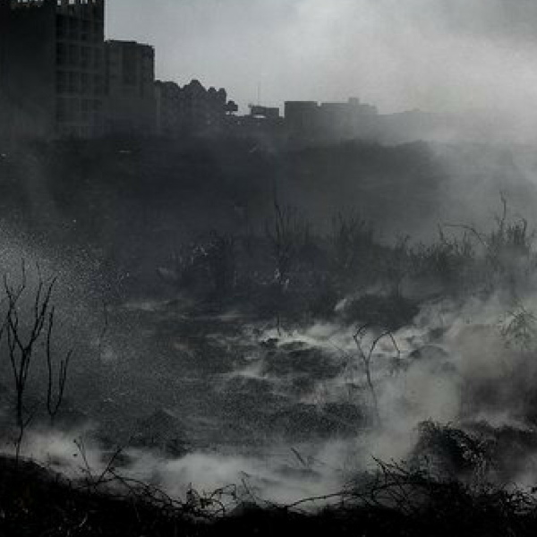 Reveal and Detonate (Develar y Detonar): Contemporary Mexican Photography